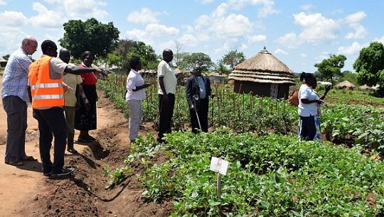 caritas uganda supports south sudanese 2017